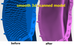 smooth 3d scanned model.PNG